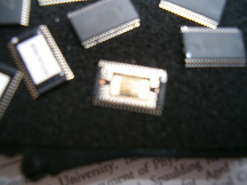 HPIM7898